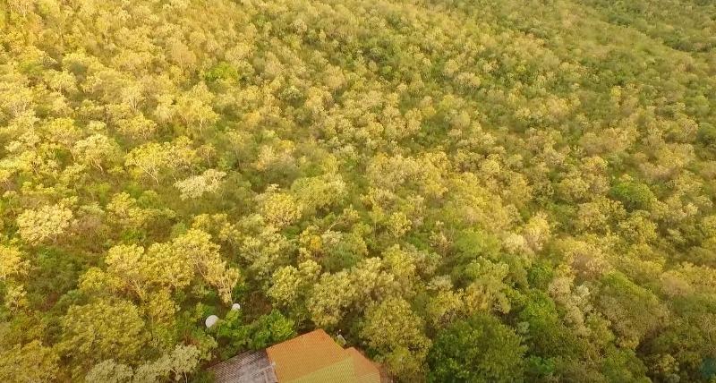 Área de futura RPPN no Goiás é vistoriada com sucesso