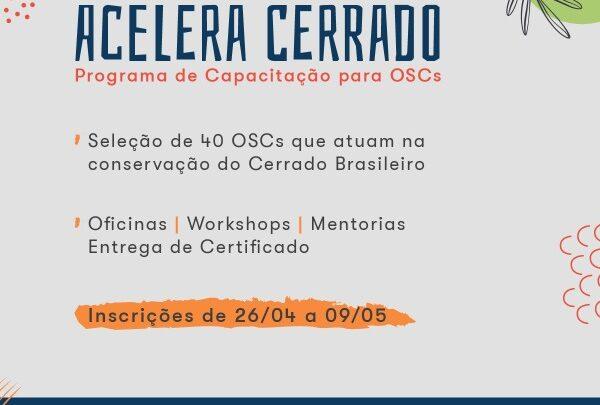 Acelera Cerrado – Programa de Capacitação para OSCs